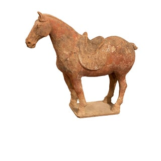 Chinese Tang Dynasty Horse Sculpture For Sale