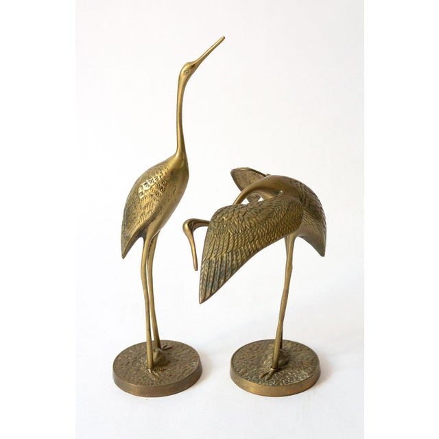 Mid Century Brass Crane Figurines - a Pair For Sale - Image 12 of 12