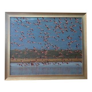"""Taking Flight"" John Banovich Original Painting 3/75 For Sale"