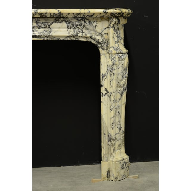 Brass Paonazetto Pompadour Fireplace Mantel For Sale - Image 7 of 12