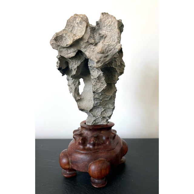 Small Chinese Scholar Stone Yingde on Display Stand For Sale - Image 9 of 13