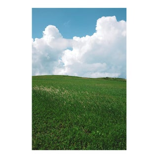 "Nicole Cohen ""Rolling Hills"" Large Photo Pigment Print For Sale"