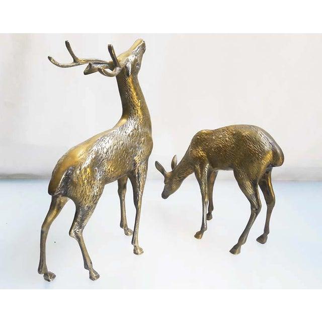 Large Vintage Brass Deers - A Pair - Image 3 of 6