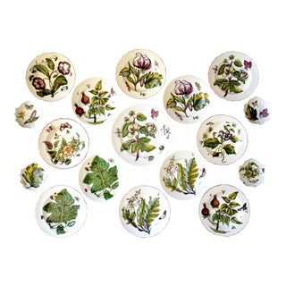 "Mottahedeh ""Chelsea Flowers"" Botanical Prints Plates - Set of 17 For Sale"