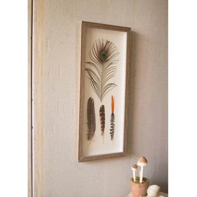 Boho Chic Four Feathers Framed Under Glass by Kalalou For Sale - Image 3 of 6