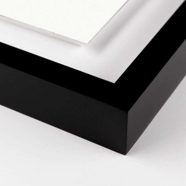 Black and White Gallery Wall, Set of 4 For Sale - Image 10 of 11