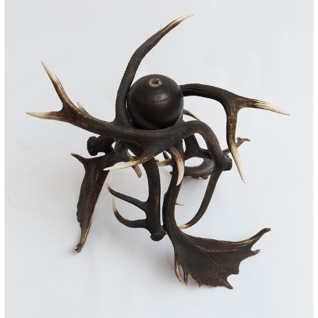 19th Century Lodge Antler Based Side Table For Sale - Image 10 of 13