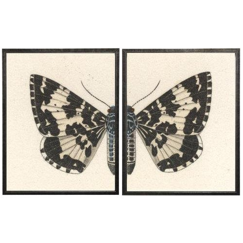 """Split Black and White Butterfly - 46"""" X 29"""" For Sale"""
