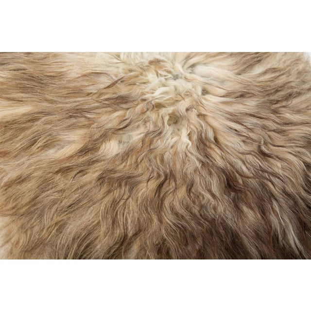 "Children's Contemporary Natural Wool Sheepskin Pelt - 2'0""x3'0"" For Sale - Image 3 of 7"