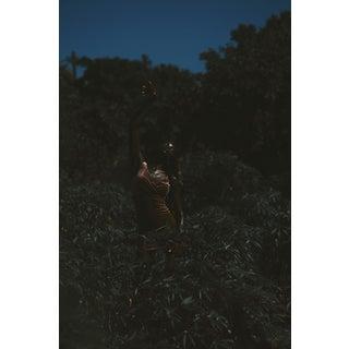 "Contemporary Photography ""Celebration"" by Douglas Condzo For Sale"