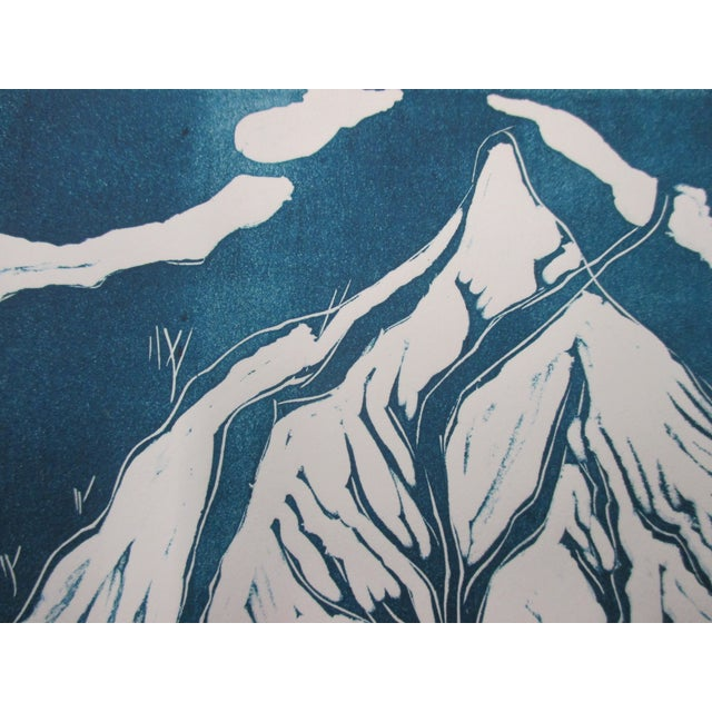 Vintage Lithograph in Blue and White About the Galapagos For Sale - Image 4 of 5