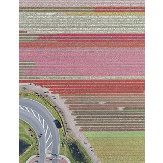 """""""AV_Tulip_Fileds_029"""" Contemporary Aerial View Limited Edition Photograph by Bernhard Lang For Sale"""