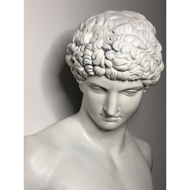 1940s Vintage Neoclassical Style Plaster Bust of Apollo Sculpture For Sale - Image 9 of 12