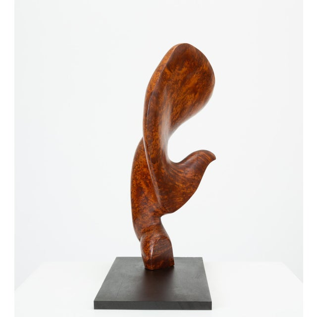 Abstract Mounted Abstract Sculpture in Bird's Eye Mahogany For Sale - Image 3 of 7