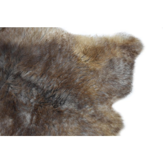 "Wool Sheepskin Pelt Handmade Rug - 2'6"" x 3'8"" - Image 4 of 8"