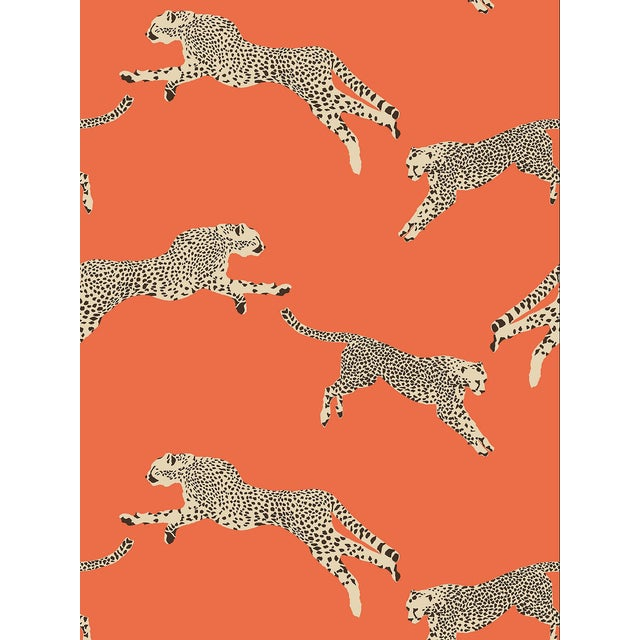 Scalamandre Leaping Cheetah Wallpaper, Orange, 8 Yards For Sale