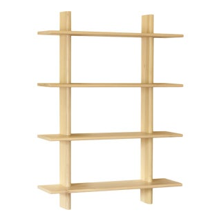 Wall Hanging Shelving Unit