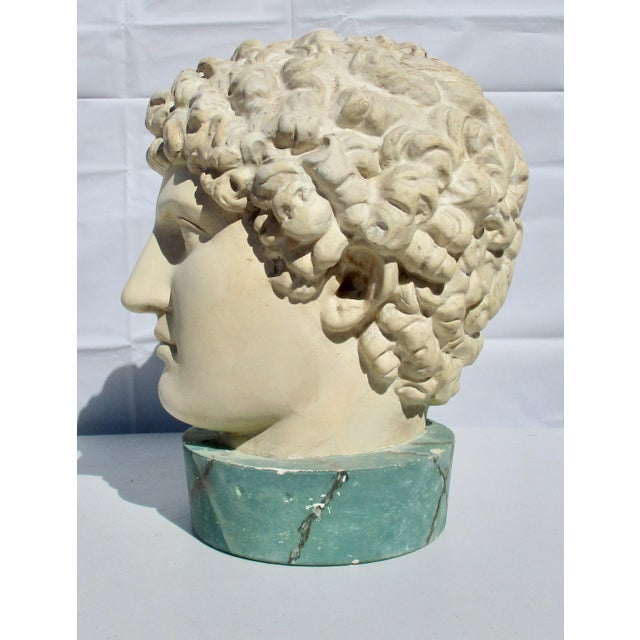 1980s Neoclassical Head of Greek Youth in Plaster Sculpture For Sale In New York - Image 6 of 8