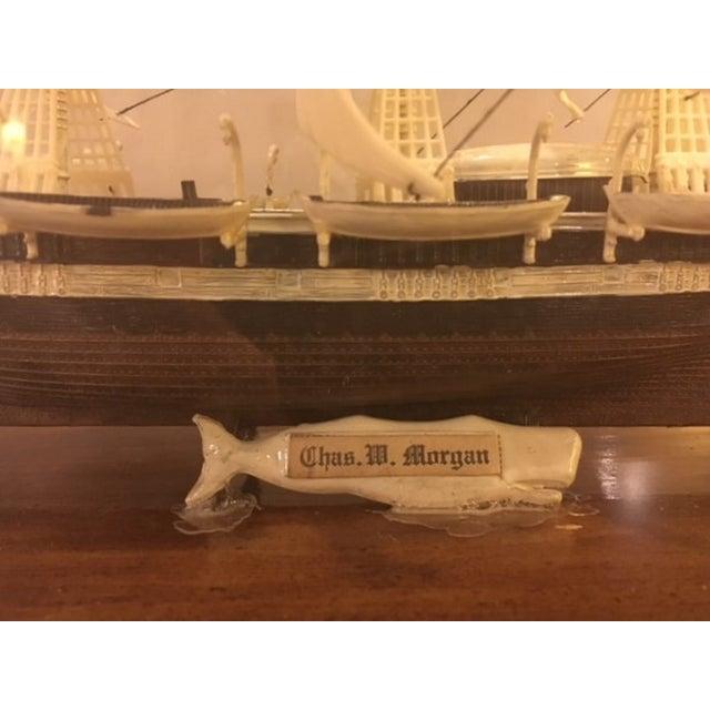Model Ship in Case - Image 2 of 5