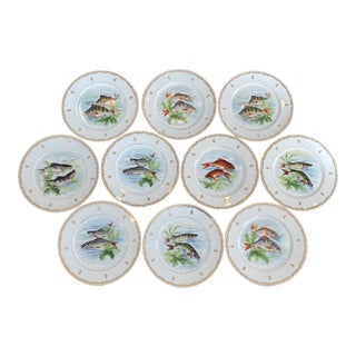 Hand Painted Fish Dinner Plates From Limoges -Set of 10 For Sale