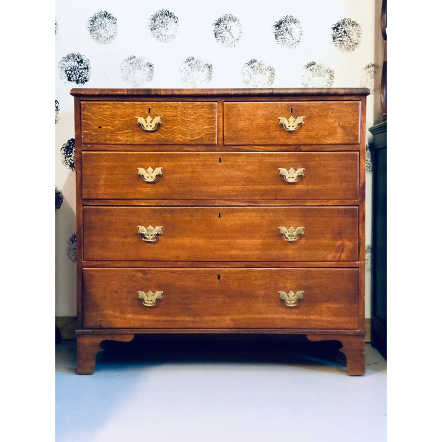 19th Century English Oak Chest For Sale - Image 13 of 13