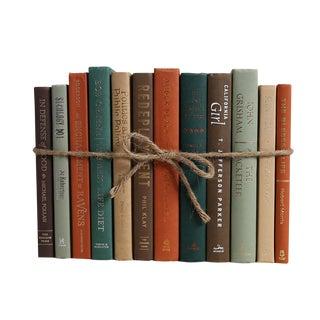 Modern Cabin ColorPak : Decorative Books in Earthtone Shades For Sale