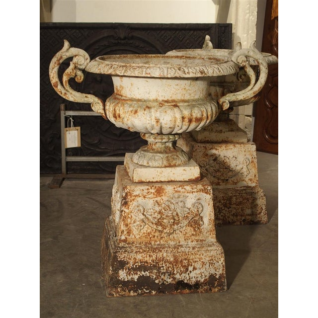 This graceful pair of cast iron urns on pedestals has a decorated upper linear border over a lobed basin. The handles are...