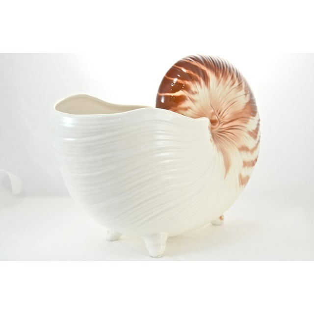 Mid 20th Century Nautilus Shell Bowl For Sale - Image 5 of 8
