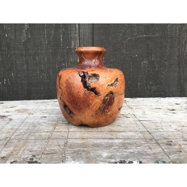 Boho Chic Wood Burl Bud Vase For Sale - Image 3 of 10