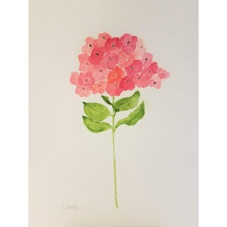 "Original Botanical Watercolor ""Pink Geranium 1"" by Contemporary Artist Christine Frisbee 9 X 12 For Sale"