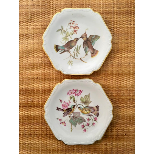 Cottage German Floral Bird Plates - a Pair For Sale - Image 3 of 8