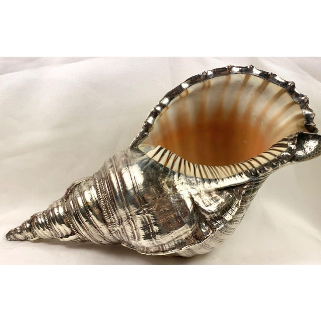 Metal Mid 20th Century Sterling Silver Coated Conch Shell For Sale - Image 7 of 11