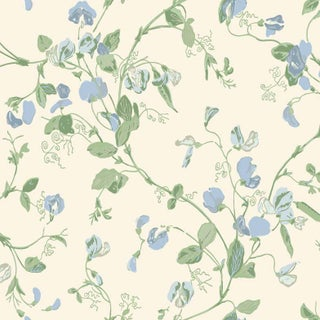 Cole & Son Sweet Pea Classic Botanical Style Wallpaper - 11 Yards For Sale
