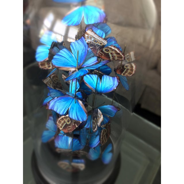 Customizable: Airborne - handcut paper based butterflies - Image 4 of 5