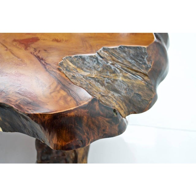 Wood Solid Root Wood Coffee Table, 1960s For Sale - Image 7 of 10