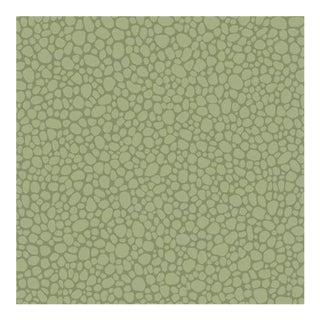 Cole & Son Pebble Wallpaper Roll - Dark Olive For Sale