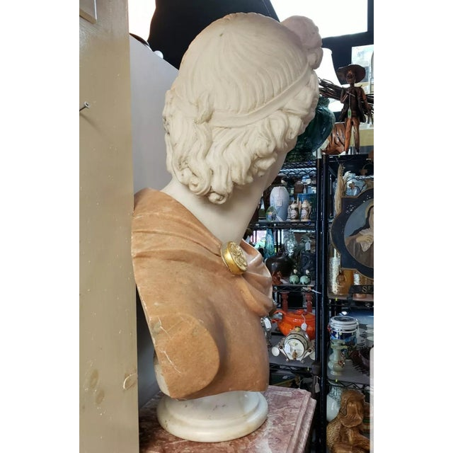 Italian Art Nouveau Carrara and Salmon Marble Apollo of Belvedere Bust on Rose Marble Pedestal For Sale - Image 4 of 7