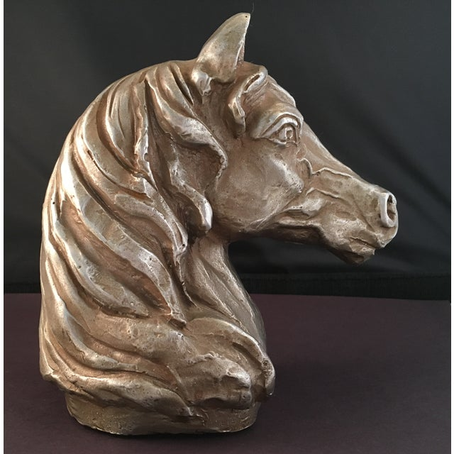 Horse Head Bust For Sale - Image 5 of 7