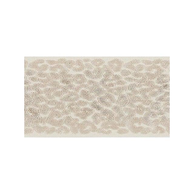 Transitional Sample, Scalamandre Leopard Velvet Fawn Tape For Sale - Image 3 of 3