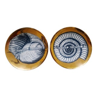 Piero Fornasetti Porcelain Gilt Seashell Plates, Conchyliorum Pattern, Pair of Plates, Circa 1950s.