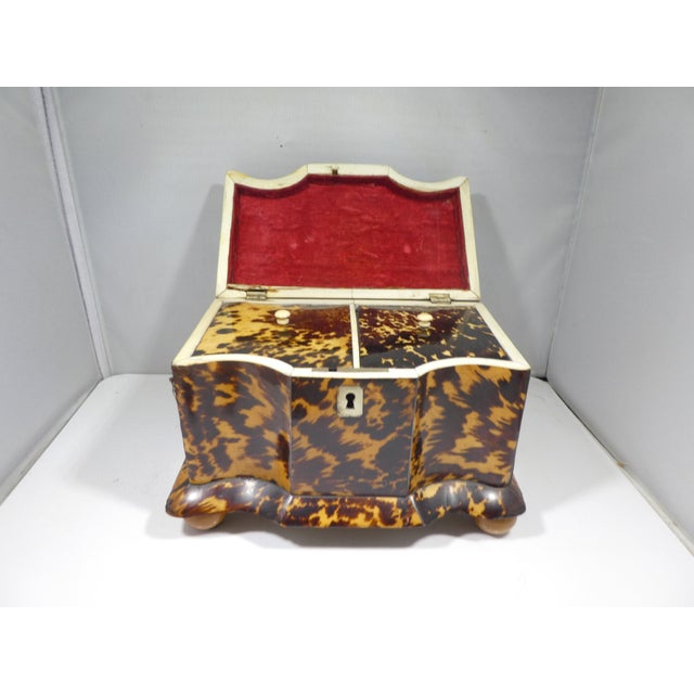 Hollywood Regency 19th Century Tortoise Shell Tea Caddy For Sale - Image 3 of 13