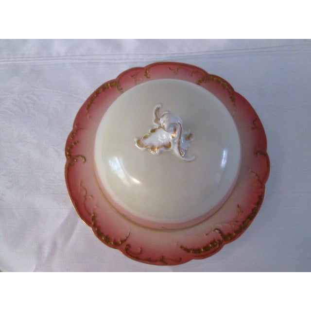 Antique French Limoges Domed Butter Dish - Image 5 of 7