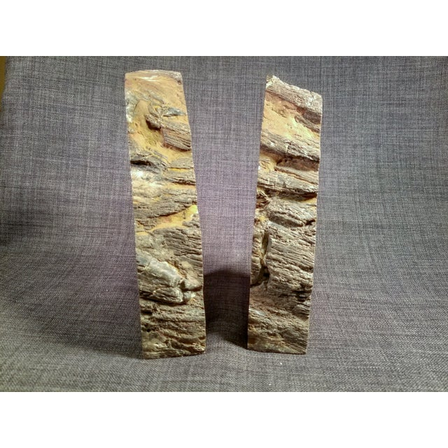 Petrified Wood Bookends - A Pair - Image 4 of 7