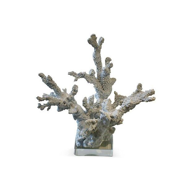 Nautical White Coral Sculpture With Lucite Base For Sale - Image 3 of 3