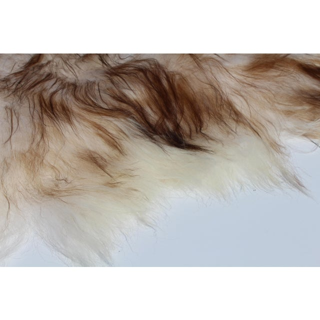 Contemporary Modern Genuine Icelandic Sheepskin Shade of Brown Rug Throw- 2′ × 3′ For Sale - Image 3 of 9