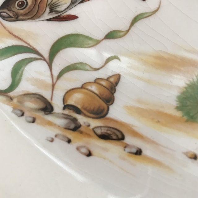 1970s Vintage Johnson Brothers Ironstone Fish/ Stugeon Platter For Sale - Image 10 of 12