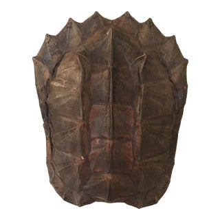 Antique Tortoise Shell