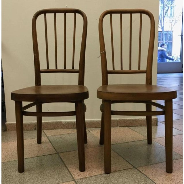 Vintage Model A 63 Chairs by Josef Frank for Thonet - A Pair For Sale - Image 6 of 6