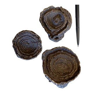 Cast Bronze Fossilized Mineral Desk Ornaments - Set of 3 For Sale