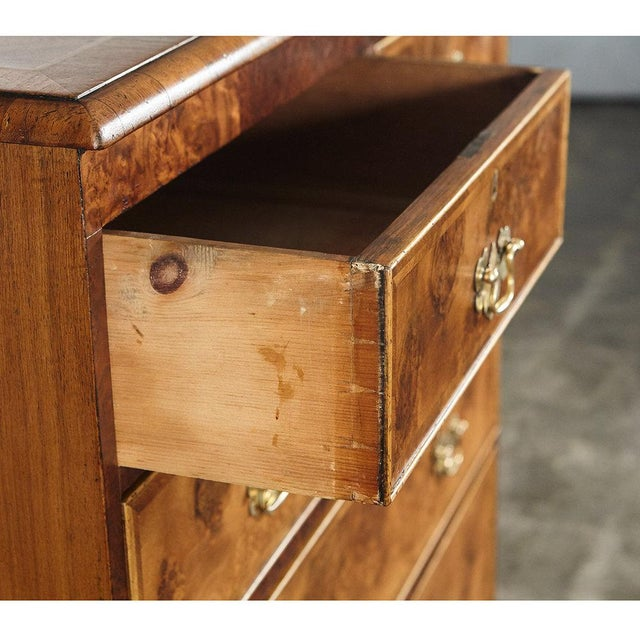 18th C. English Walnut Burl Wood Chest of Drawers - Image 4 of 4